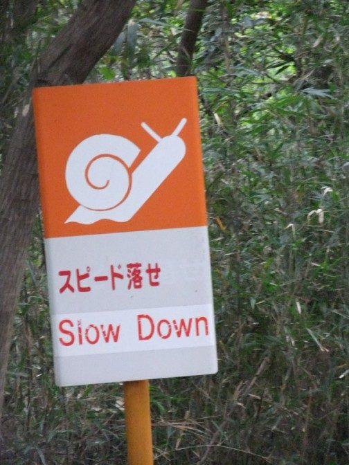 スピード落せ