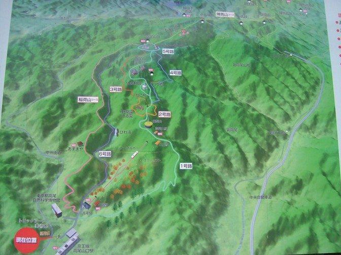 高尾山鳥瞰図
