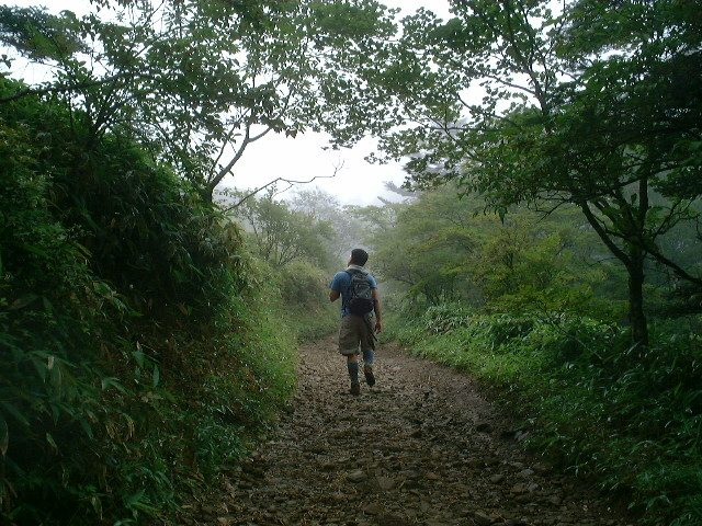 歩きやすい道を進む