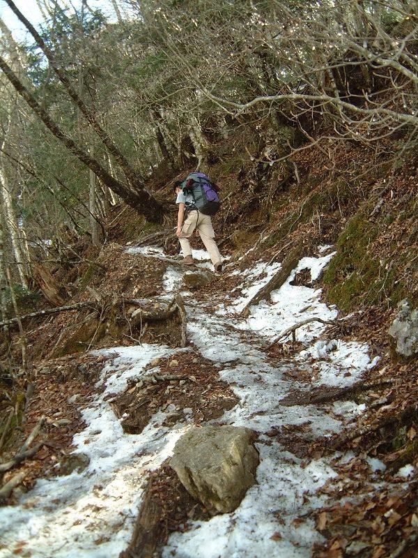 登山道の残雪が増えてきた