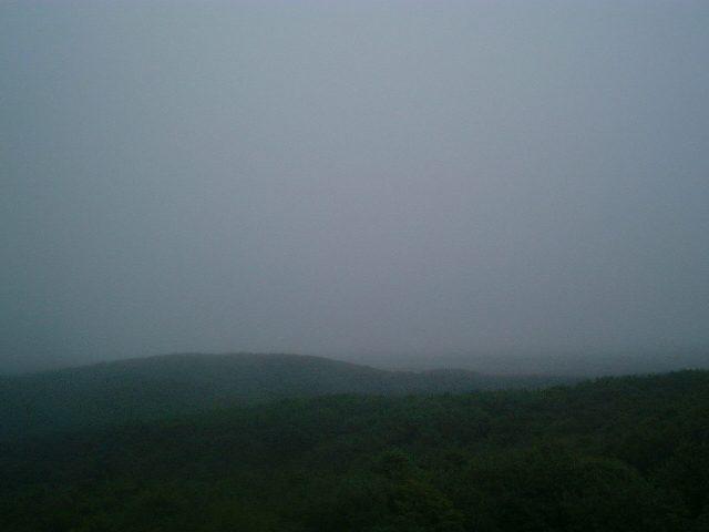 湿原は全く見ることができず
