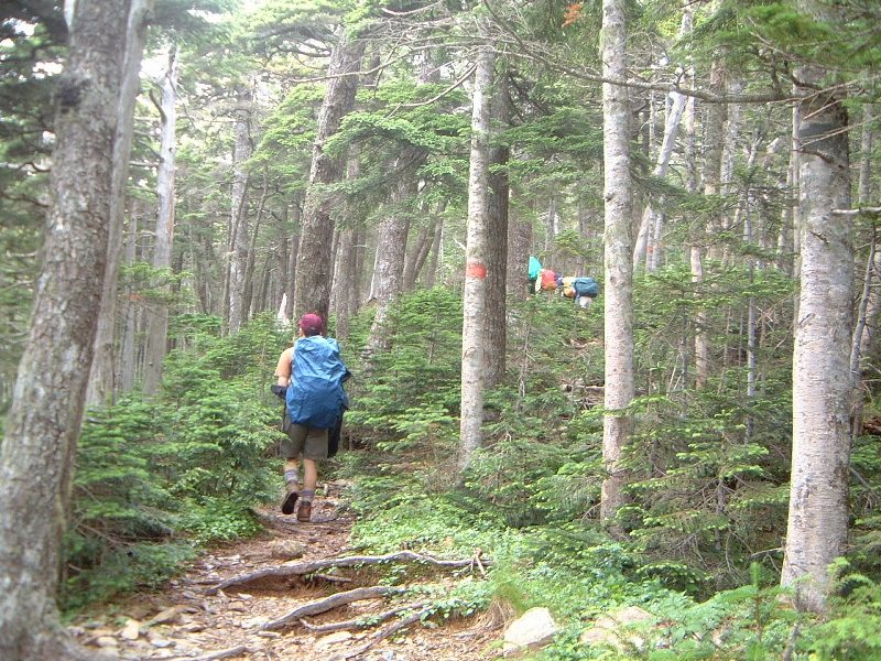 小雨の中、登山は続く