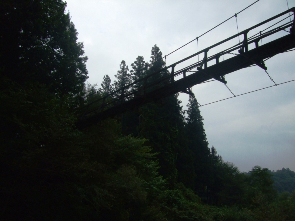 吊り橋を見上げる