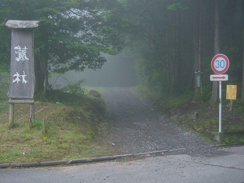 霧の森へと続く道