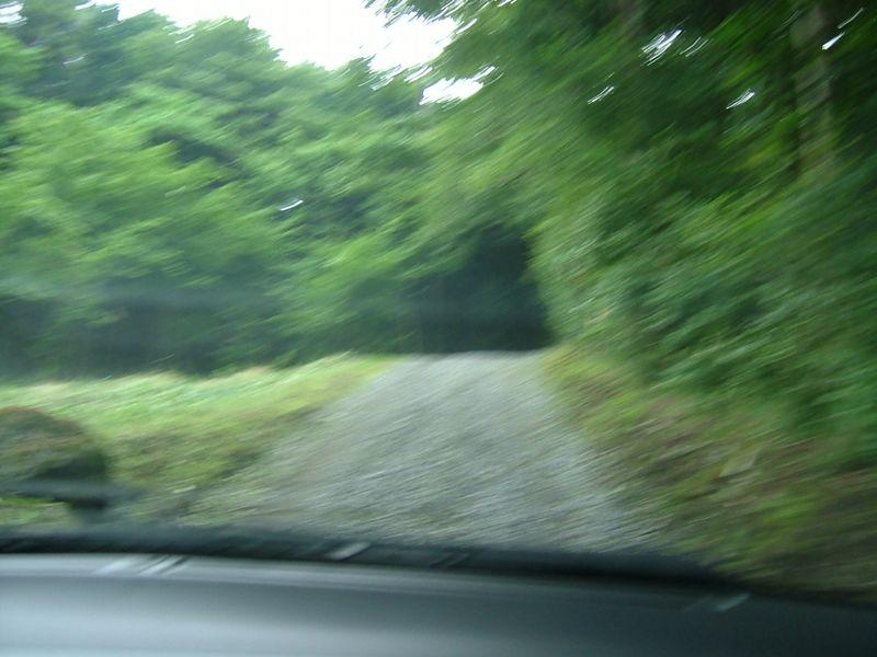 森の未舗装路を走る