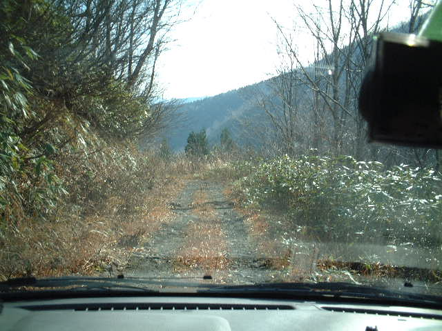 山の中を進む