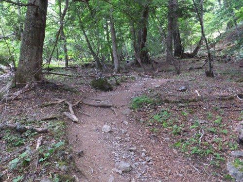 快適な山歩き