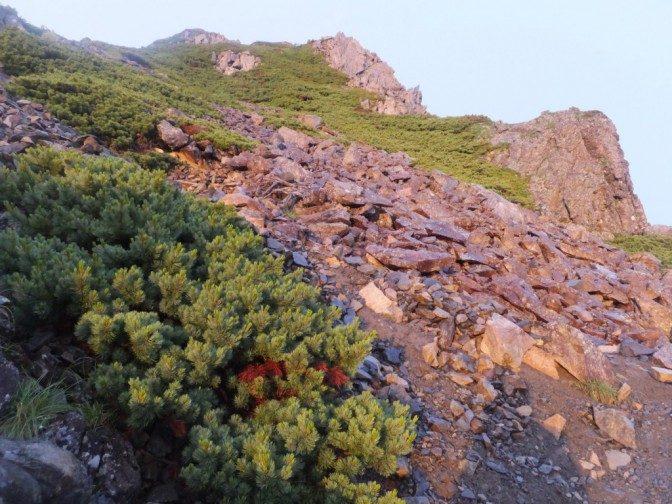 朝日を浴びて赤く染まる岩肌