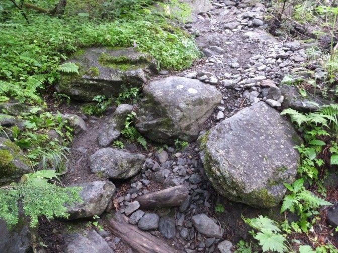 転倒した岩