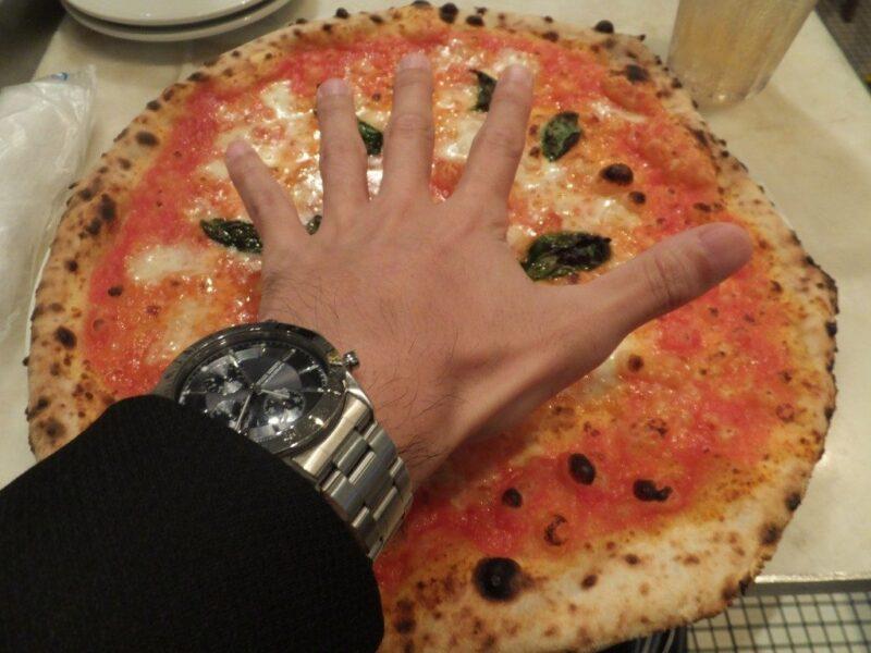 手のひらより遙かに大きい