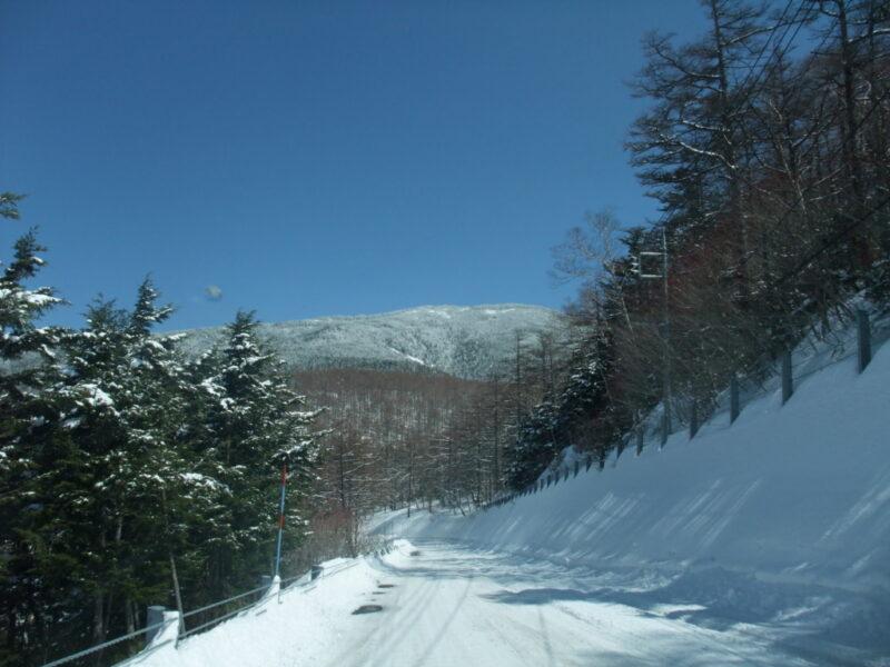 完全に雪に覆われた道