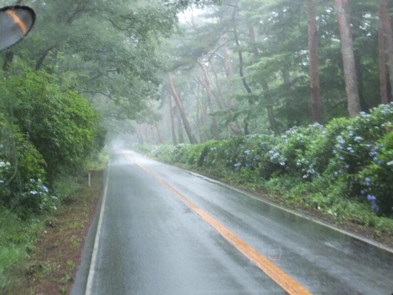 那須街道をぐいぐい進む
