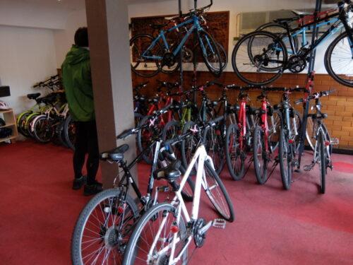 トレックリング店内には自転車いっぱい