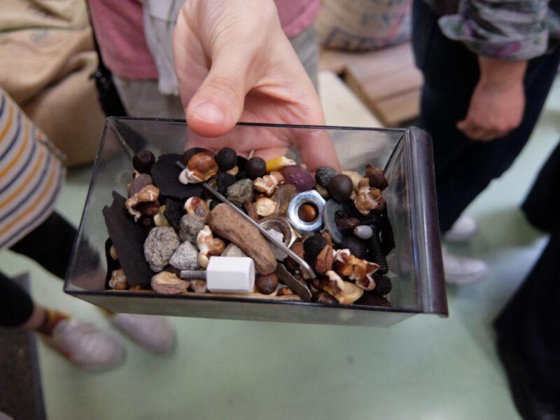 ハンドピックで見つかったゴミ