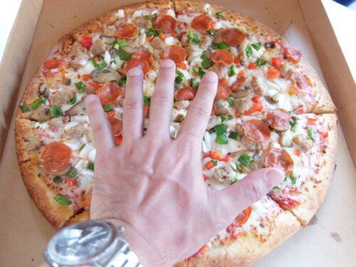 手のサイズと比較するのもおこがましい