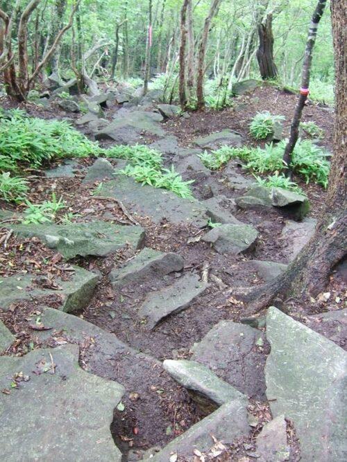 岩だらけの道