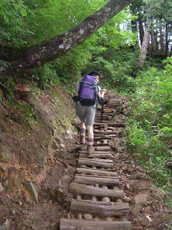 丁寧に作られた木の階段
