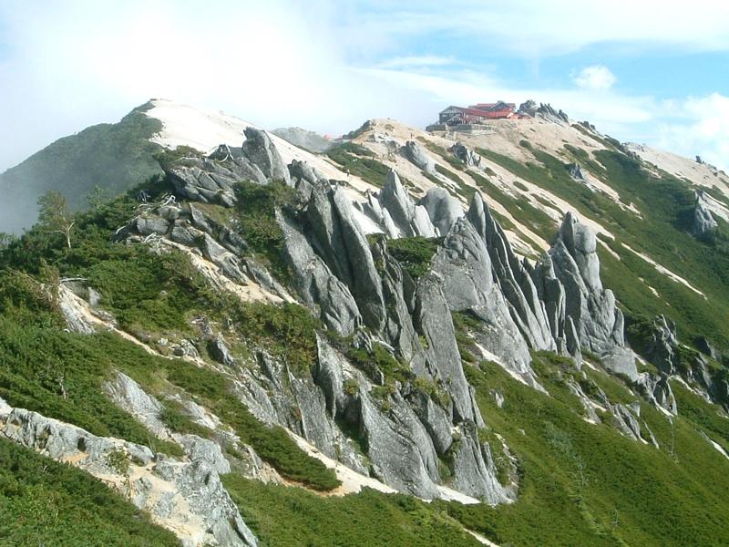 ハリネズミ状の岩場