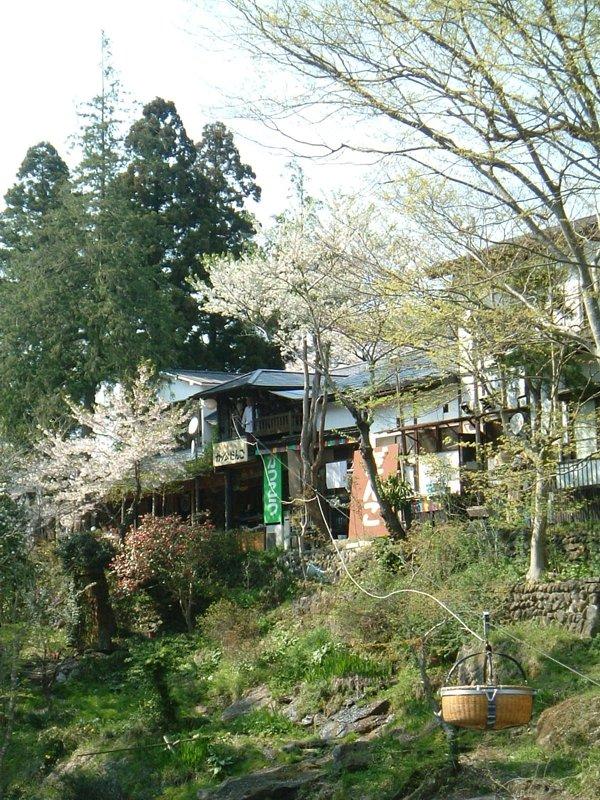 対岸の茶屋