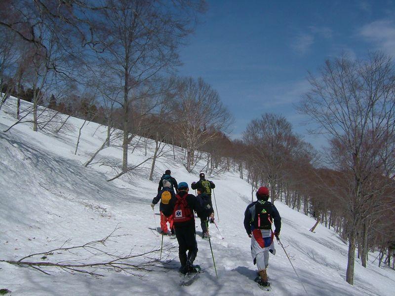 山の中を歩く