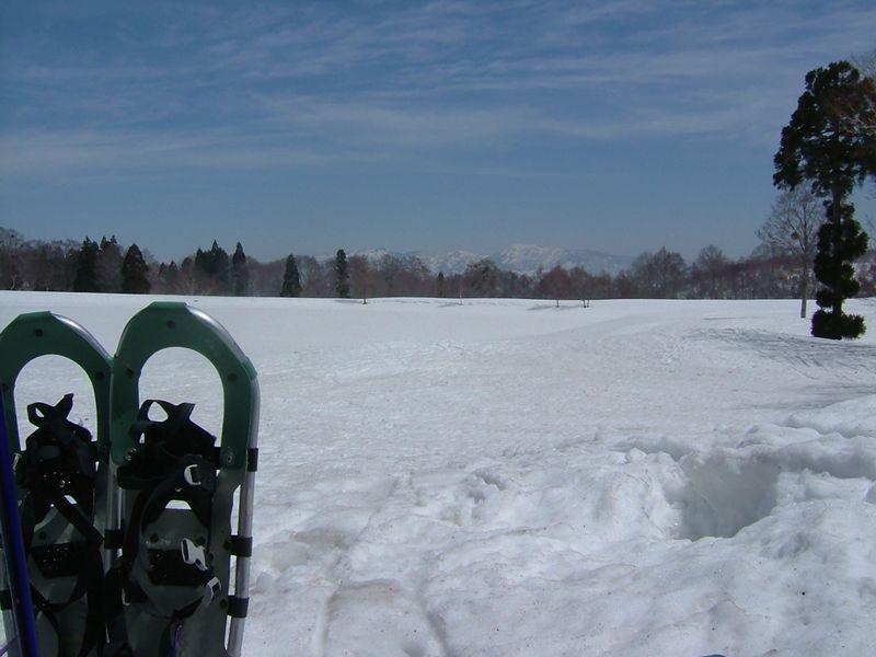 雪に閉ざされた沼
