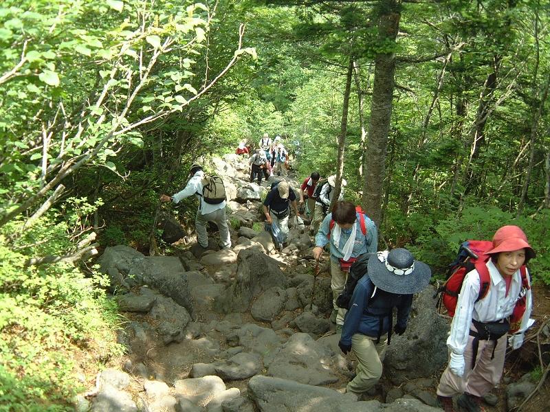 登山客だらけの登山道