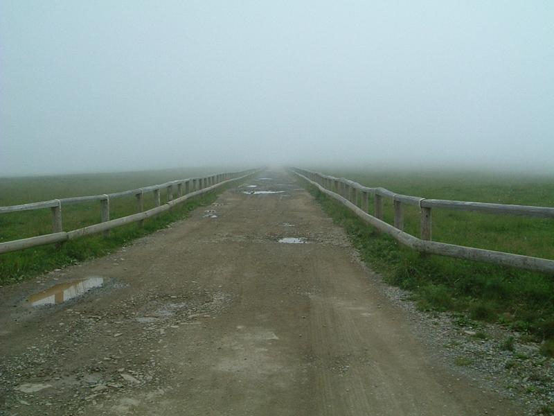 霧の中に消えていく道
