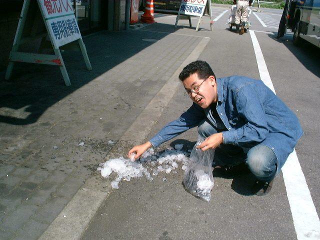 氷を拾うばばろあ