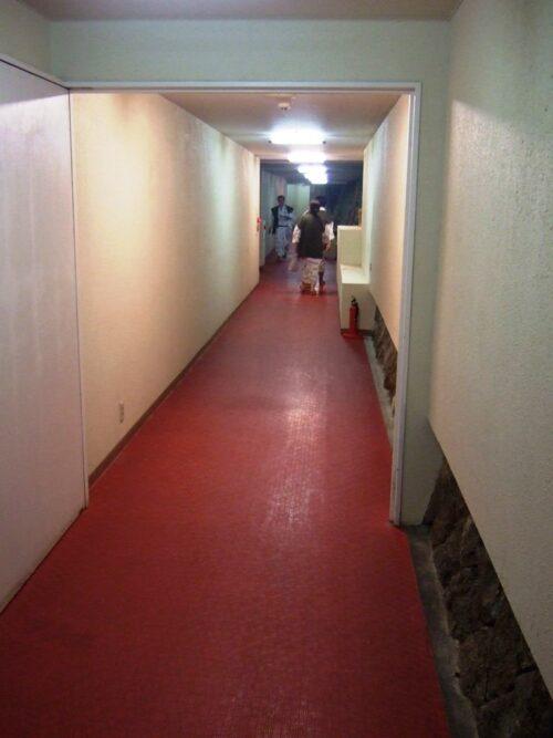 湿気がものすごい廊下