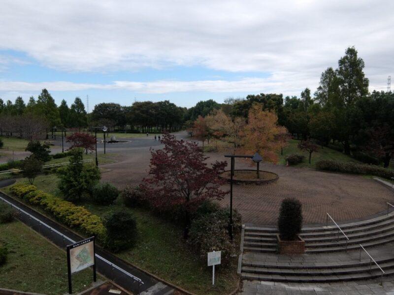 色づく舎人公園