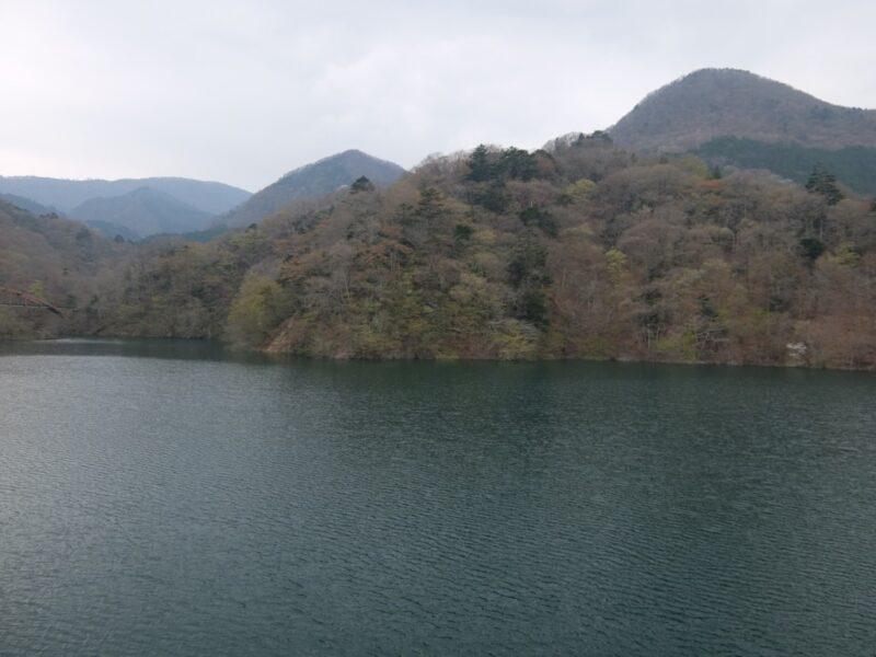 つり橋からの景色