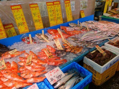 ずらりと並ぶ魚