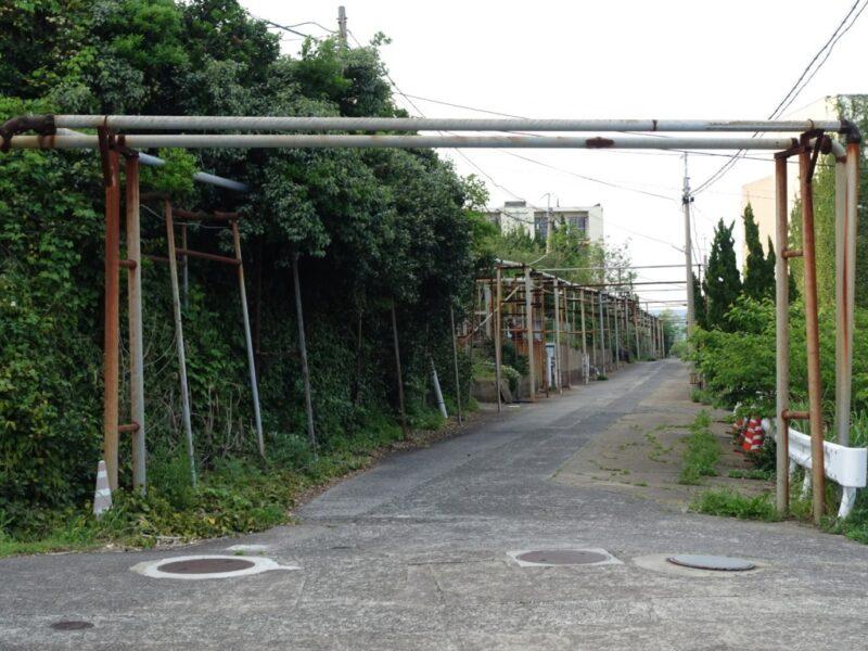団地の間を通る道