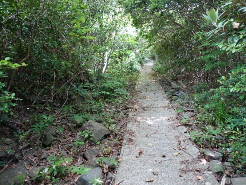 神社脇の道