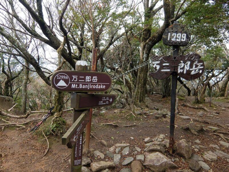 万二郎岳山頂