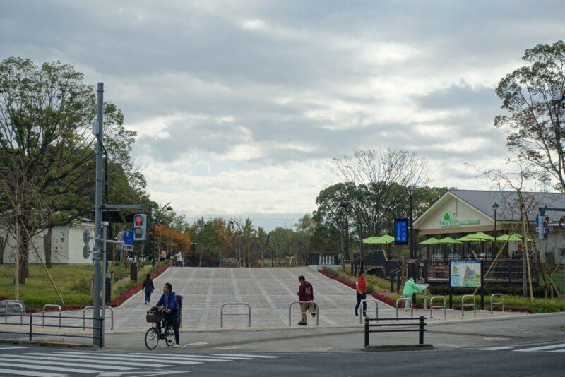 舎人公園の新しい場所