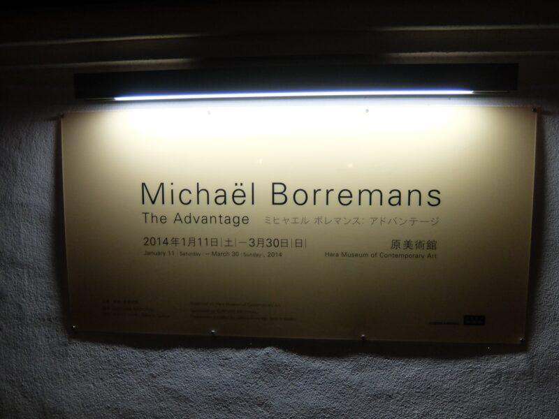 ミヒャエル ボレマンス:アドバンテージ