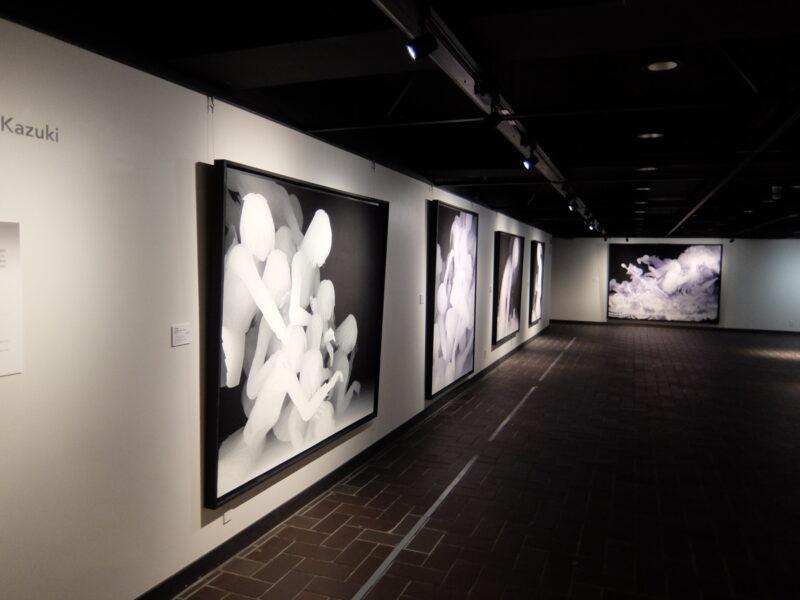 都美セレクション 新鋭美術家 2015