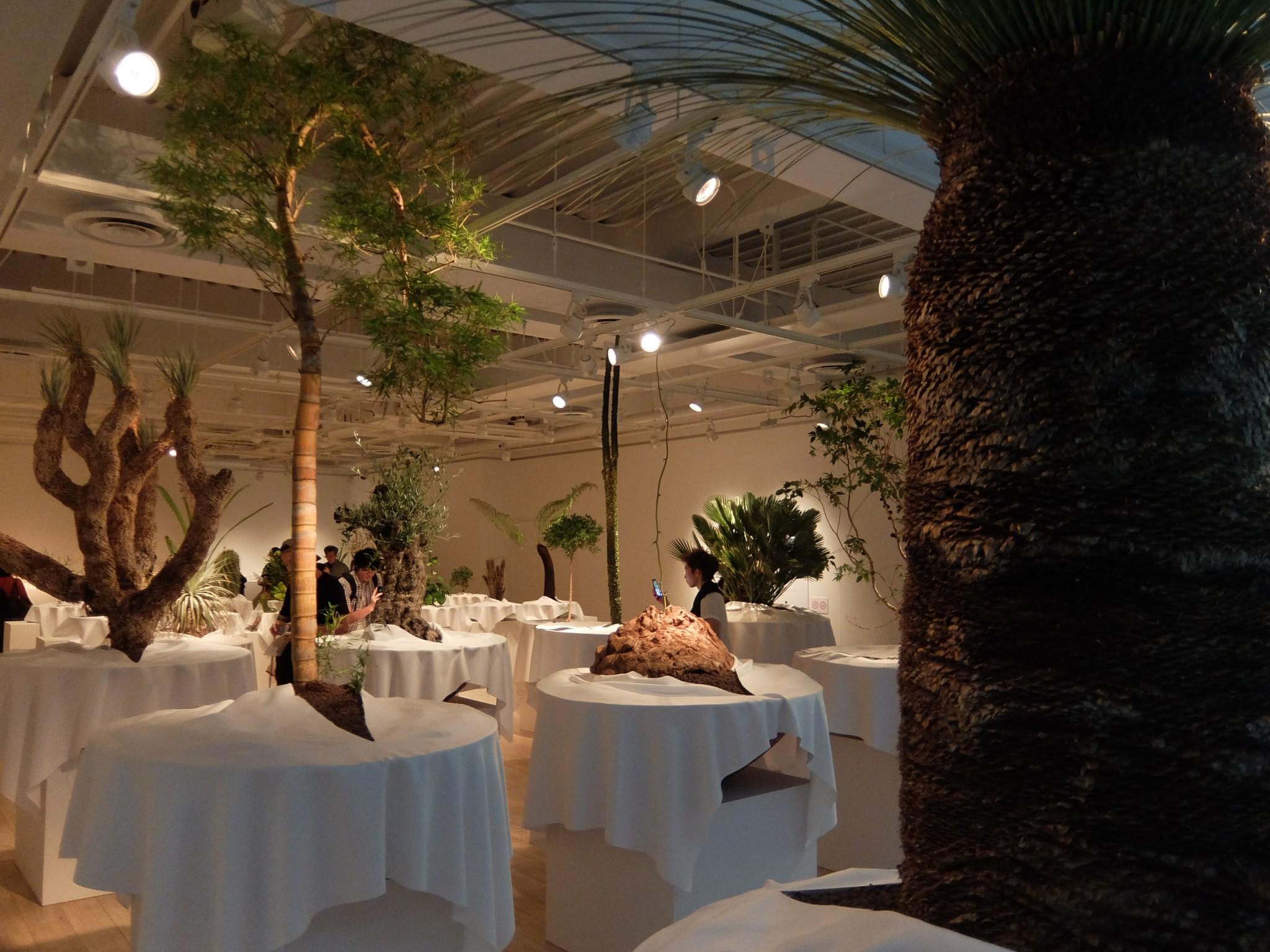 ウルトラ植物博覧会 西畠清順と愉快な植物たち