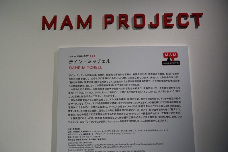 MAMプロジェクト024: デイン・ミッチェル