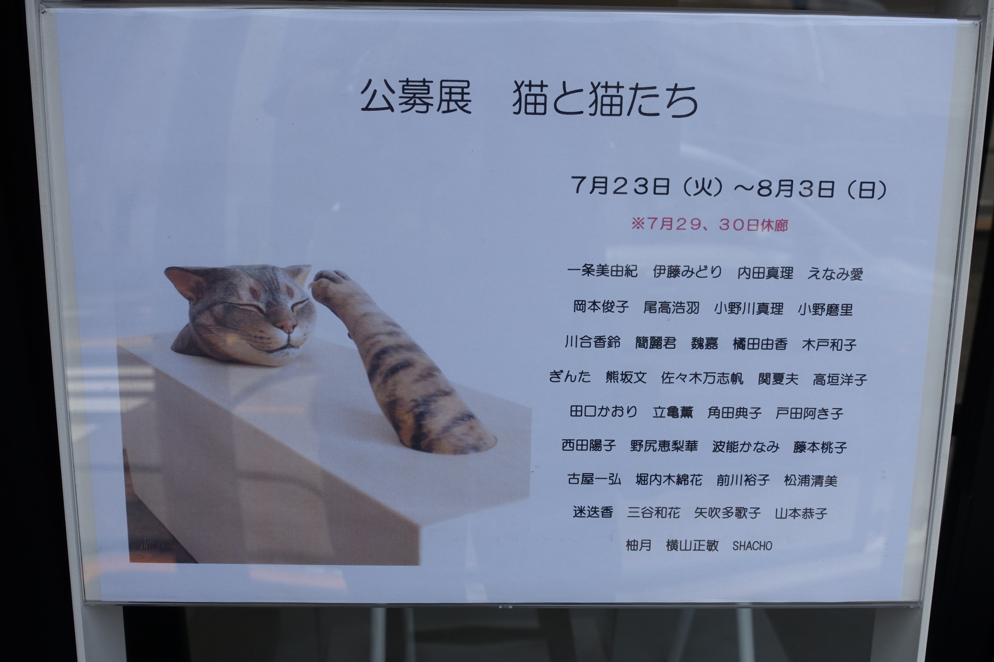 公募展 猫と猫たち