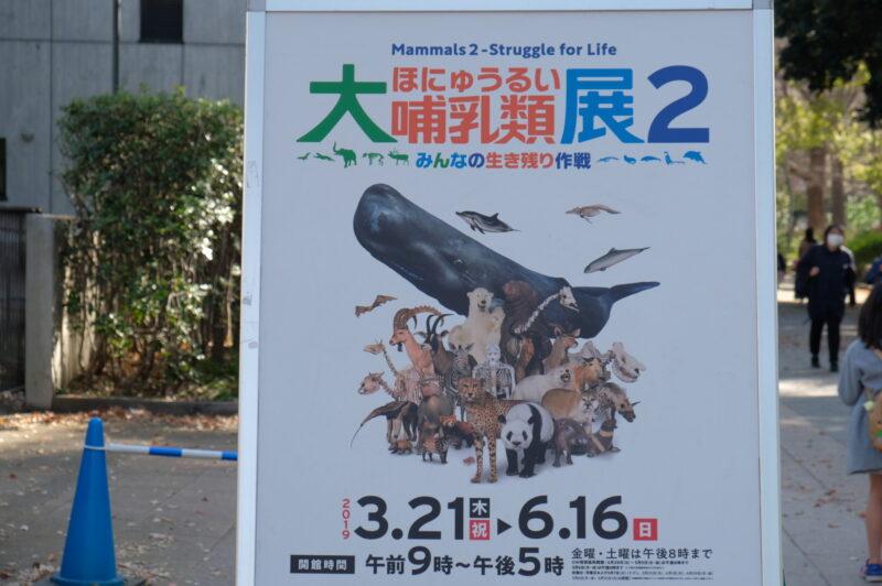 特別展「大哺乳類展2ーみんなの生き残り作戦」@国立科学博物館